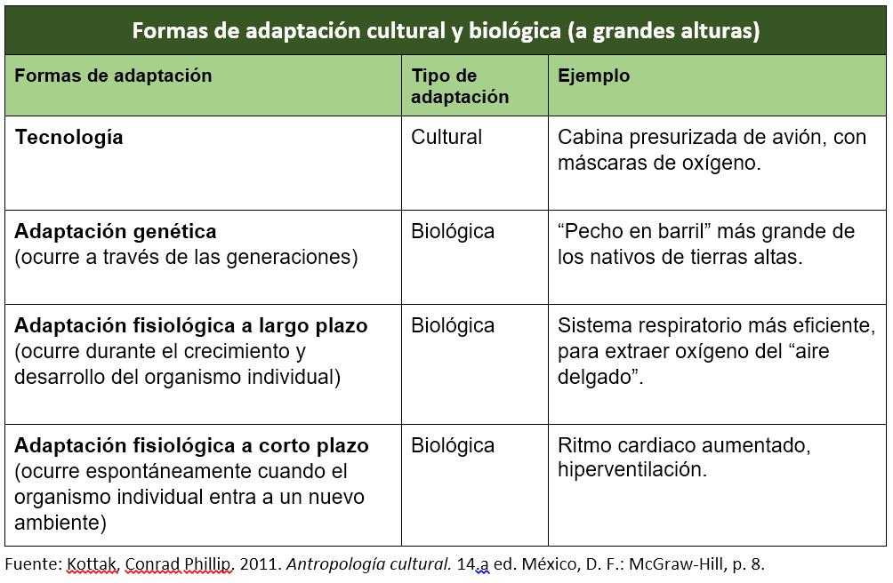T02_Adaptación cultural y biológica